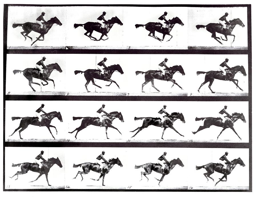 Horse Photograph - High-speed Sequence Of A Galloping Horse And Rider by Eadweard Muybridge Collection/ Kingston Museum/science Photo Library