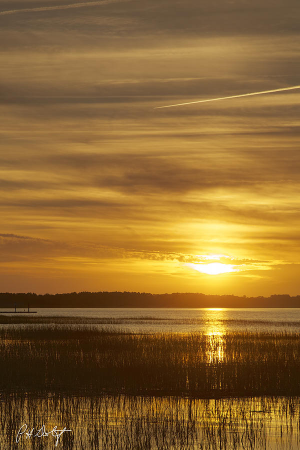 Beaufort County Photograph - High Tide In The Marsh by Phill Doherty