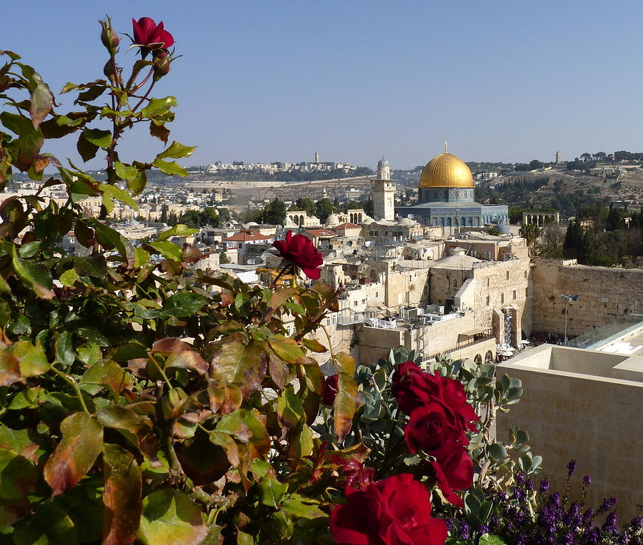 High view of temple mount by Rita Adams