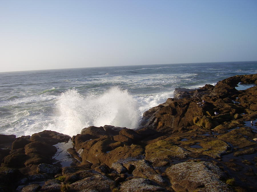 Landscape Photograph - High Wave At The Oregon Coast by Yvette Pichette