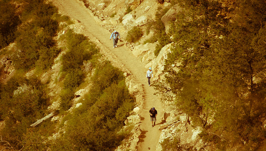 Grand Canyon Photograph - Hikers In Canyon by Nickaleen Neff