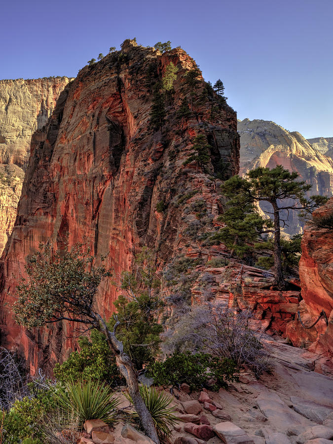 Angels Landing Photograph - Hiking Angels by Chad Dutson
