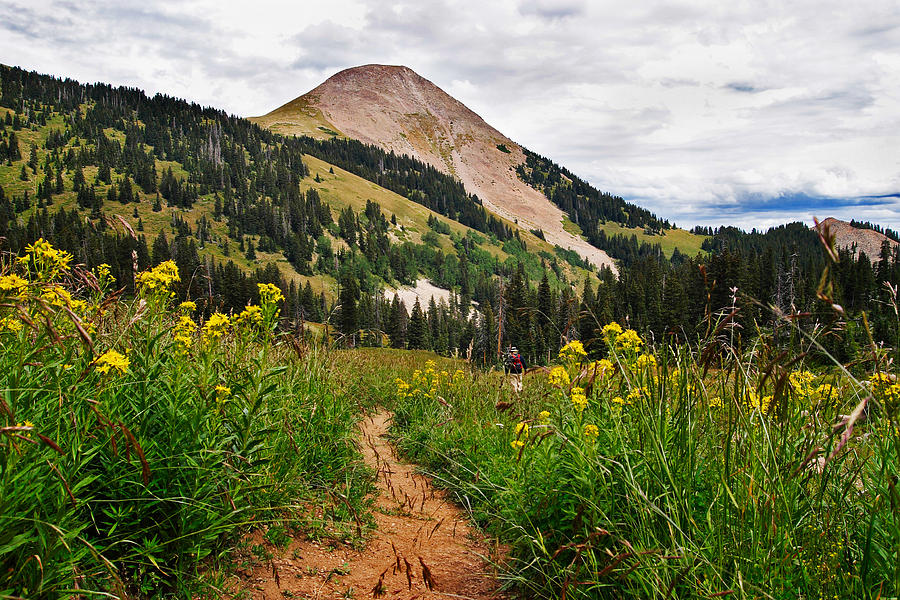3scape Photograph - Hiking in La Sal by Adam Romanowicz