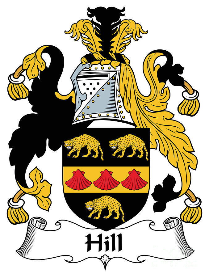 Hill Coat Of Arms Ii Irish Photograph By Heraldry