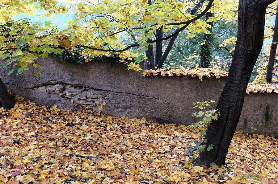 Prague Photograph - Hill In Prague by Gianfranco Evangelista
