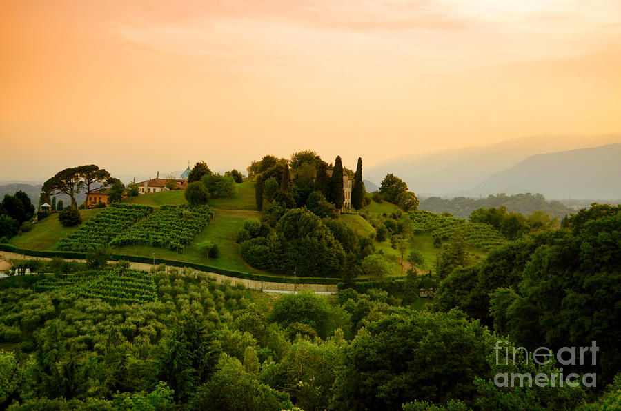 Hills Of Asolo Photograph