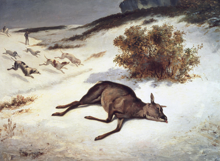 Hind Forced Down In The Snow Painting - Hind Forced Down In The Snow by Gustave Courbet