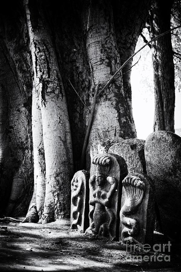 Rural Photograph - Hindu Shrine by Tim Gainey