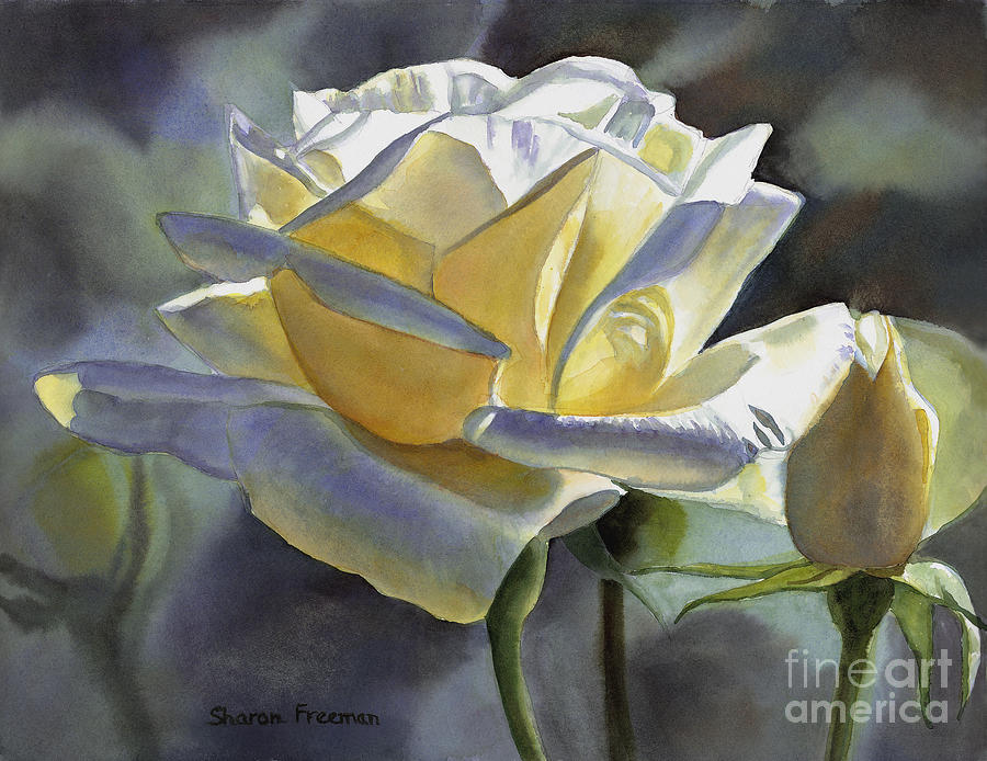 Roses Painting - Hint of Gold by Sharon Freeman