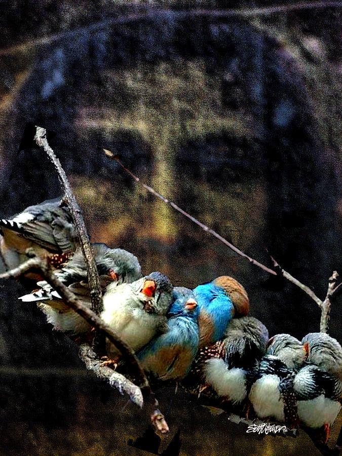 Hymn Digital Art - His Eye Is On The Sparrow by Seth Weaver