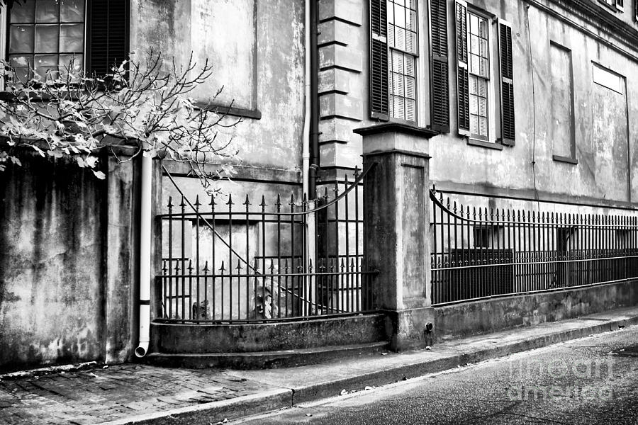 Historic Photograph - Historic Savannah by John Rizzuto