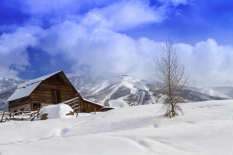 Cold Photograph - Historic Steamboat Springs Barn by Teri Virbickis