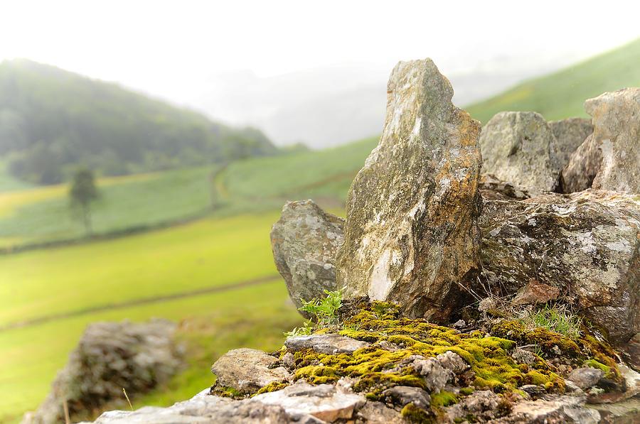 Ireland Photograph - History And Nature. Wicklow. Ireland by Jenny Rainbow