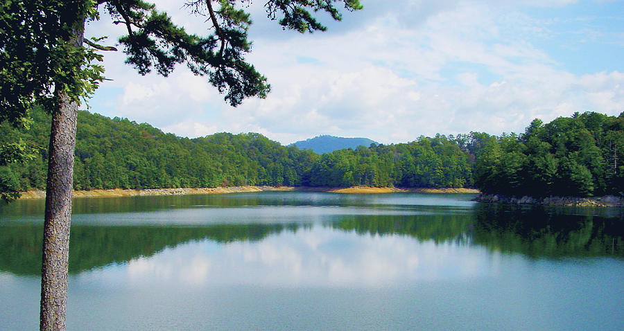 Green Photograph - Hiwassee Lake by Robert J Andler