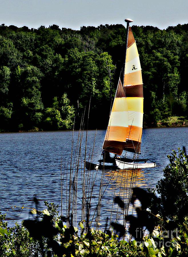 Sailing Photograph - Hobbie by Scott Allison