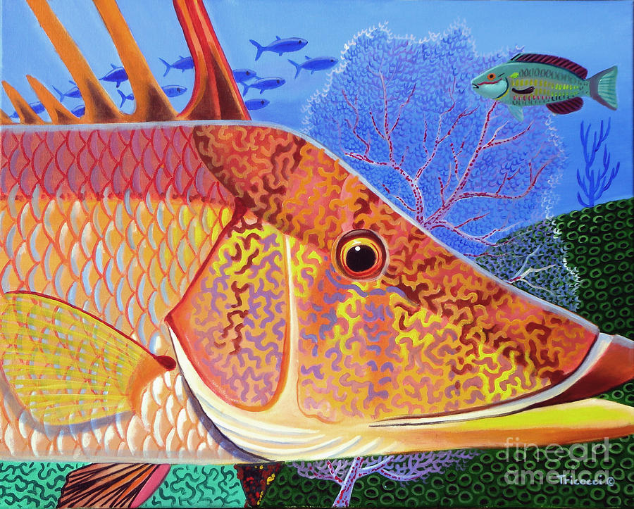 Hogfish Painting - Hog Face by Lina Tricocci