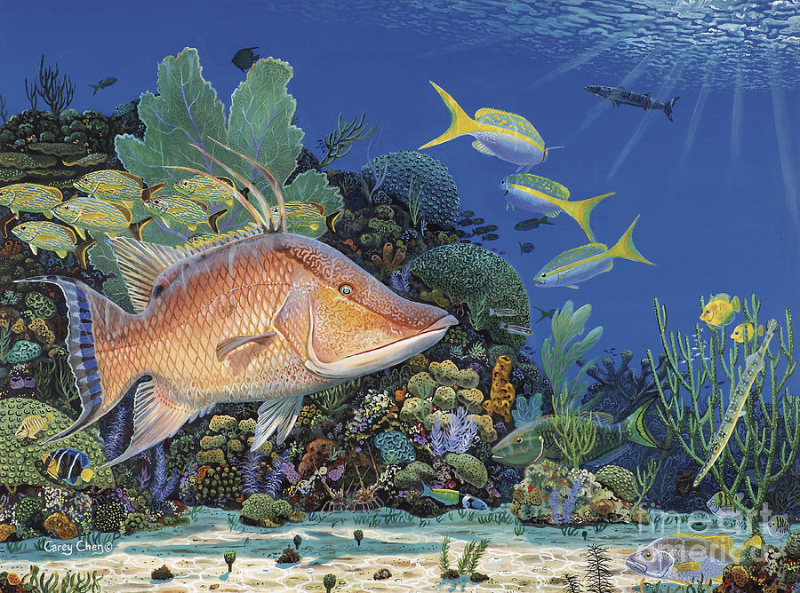 Hogfish Painting - Hog Heaven Re005 by Carey Chen