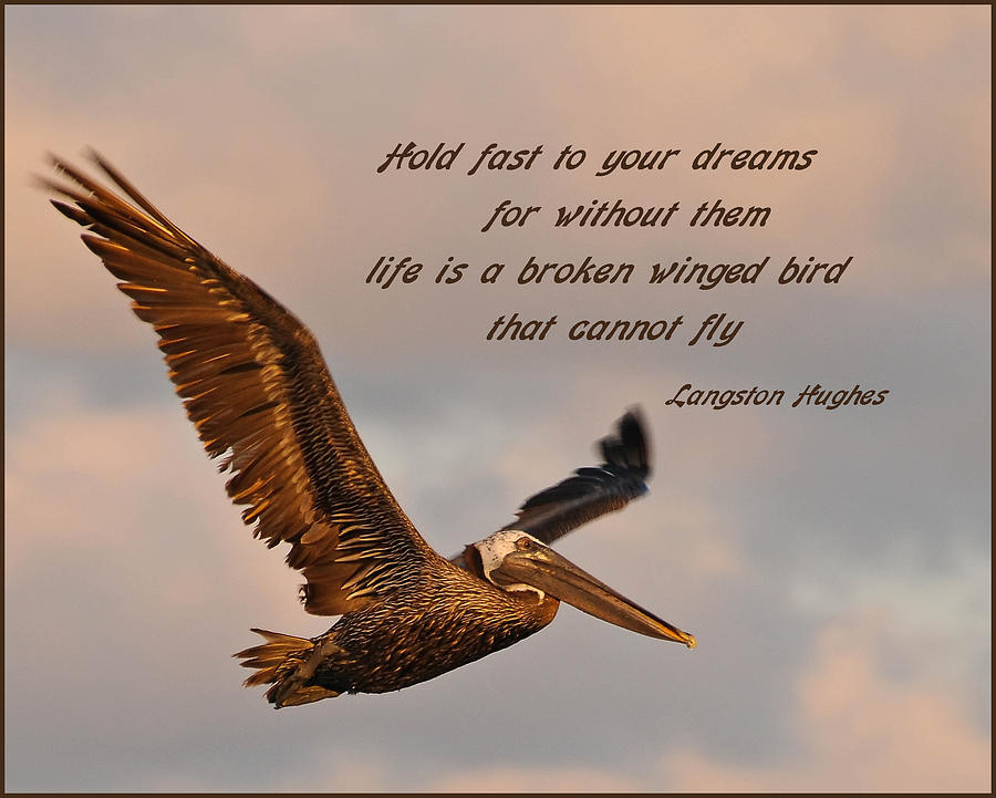 Quotes Photograph - Hold Fast To Your Dreams by Geraldine Alexander