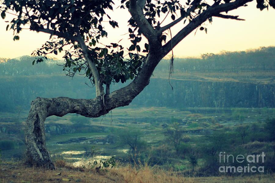 Photograph - Hold It Together by Vishakha Bhagat