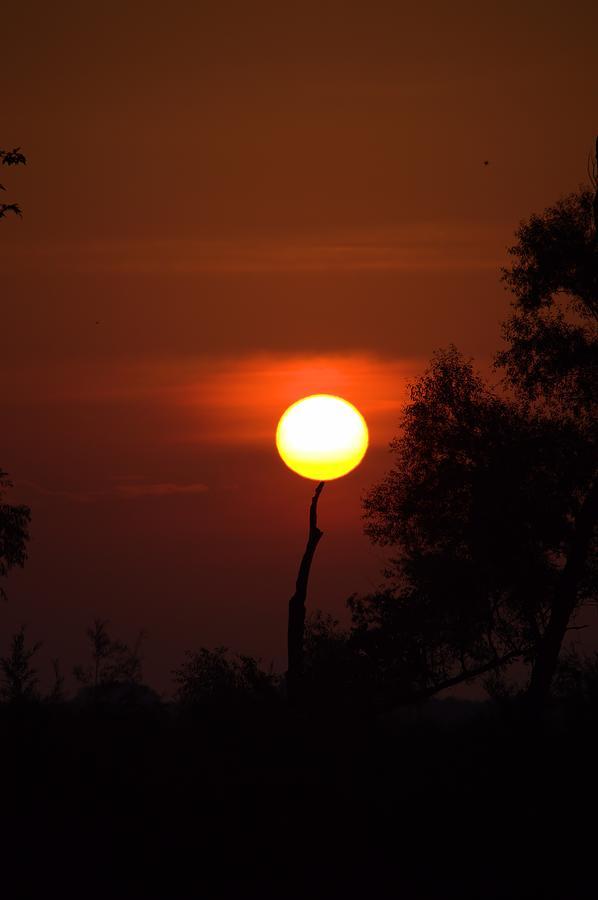 Sun Photograph - Holding Up The Sun by Bonfire Photography