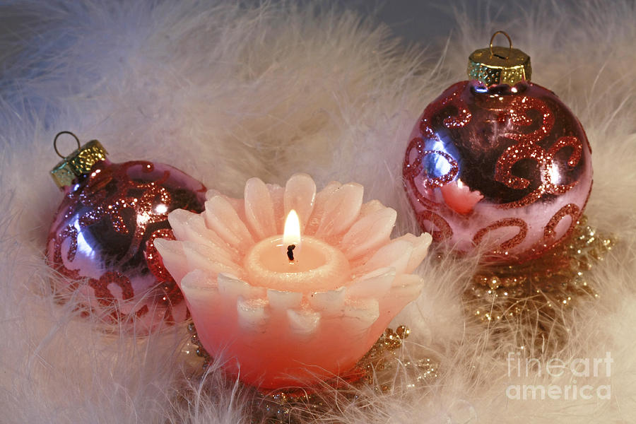 Holiday Moments Photograph by Inspired Nature Photography Fine Art Photography