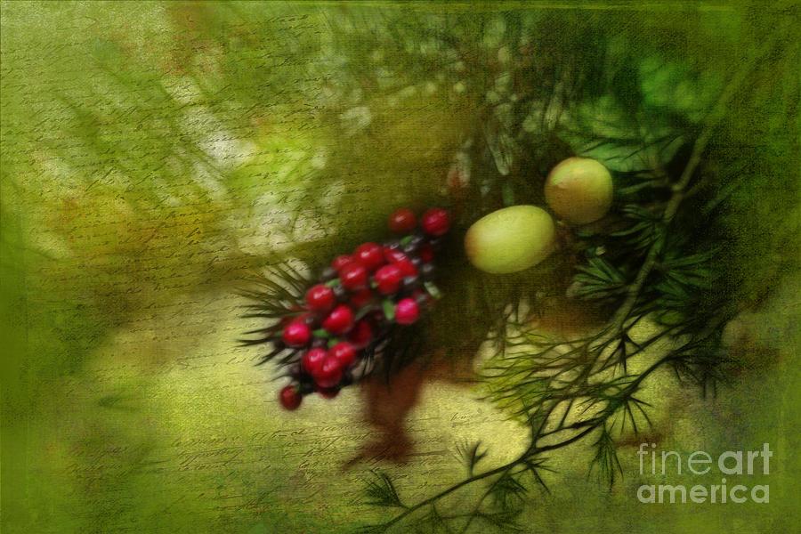 Christmas Photograph - Holiday Season by Judi Bagwell
