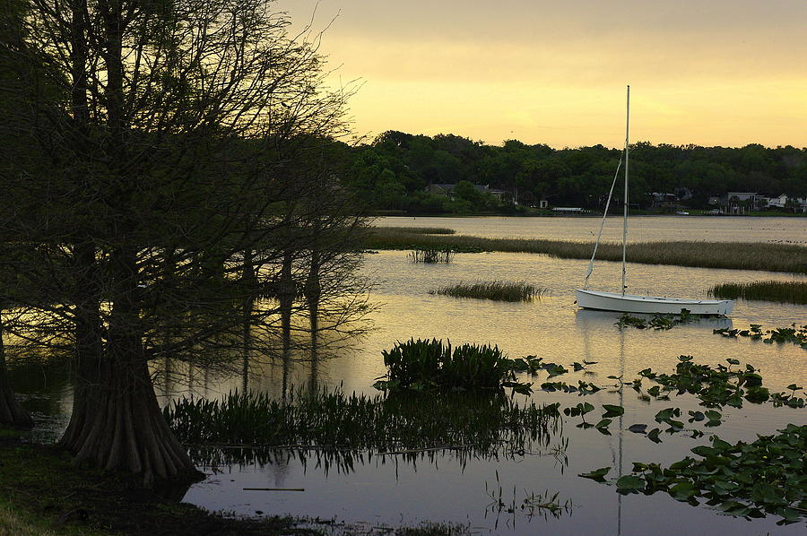 Hollingsworth Sunset Photograph
