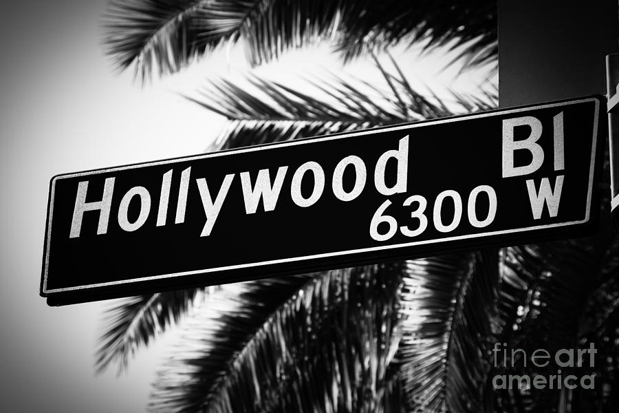 Hollywood Boulevard Street Sign In Black And White Photograph By