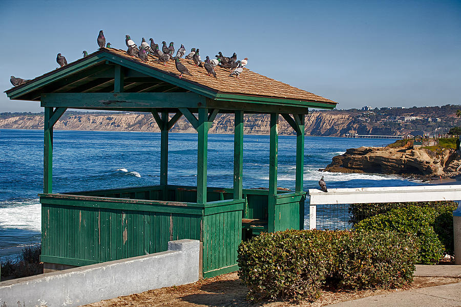 California Photograph - Home By The Sea by Peter Tellone