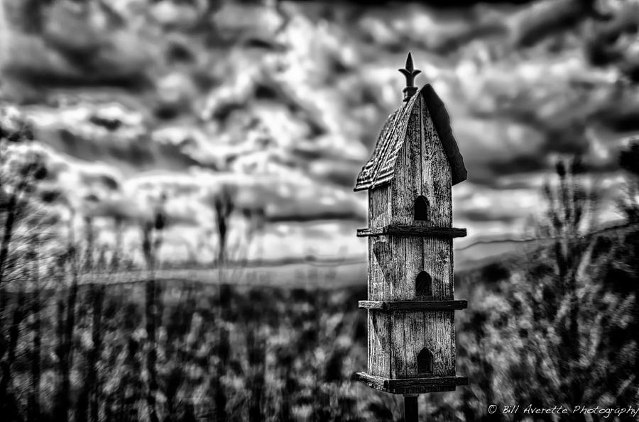 Home in the Sky by Bill Averette