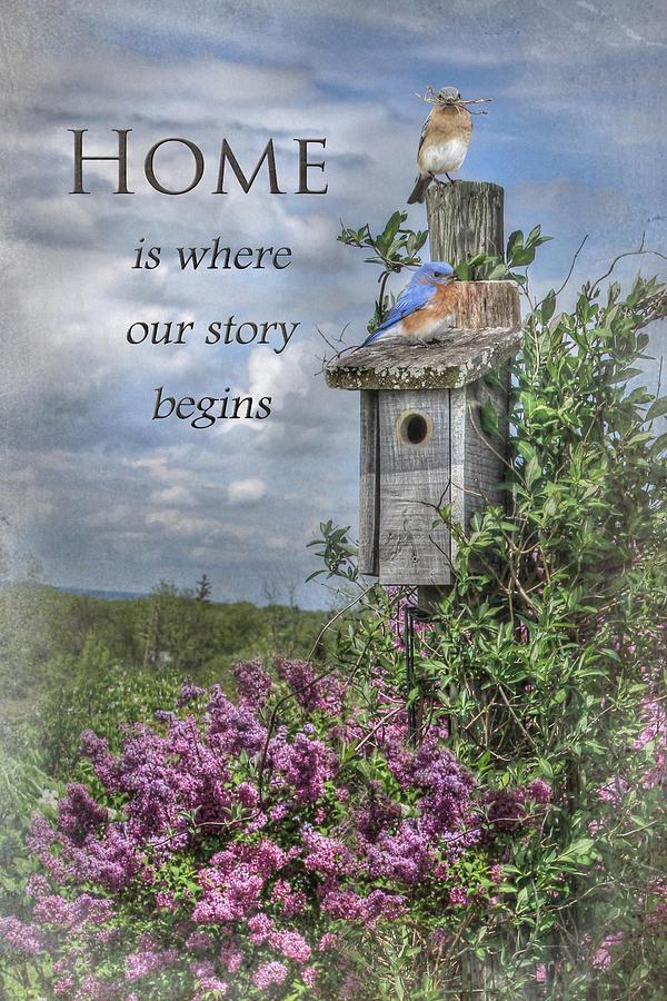 Bird Photograph - Home Is Where by Lori Deiter