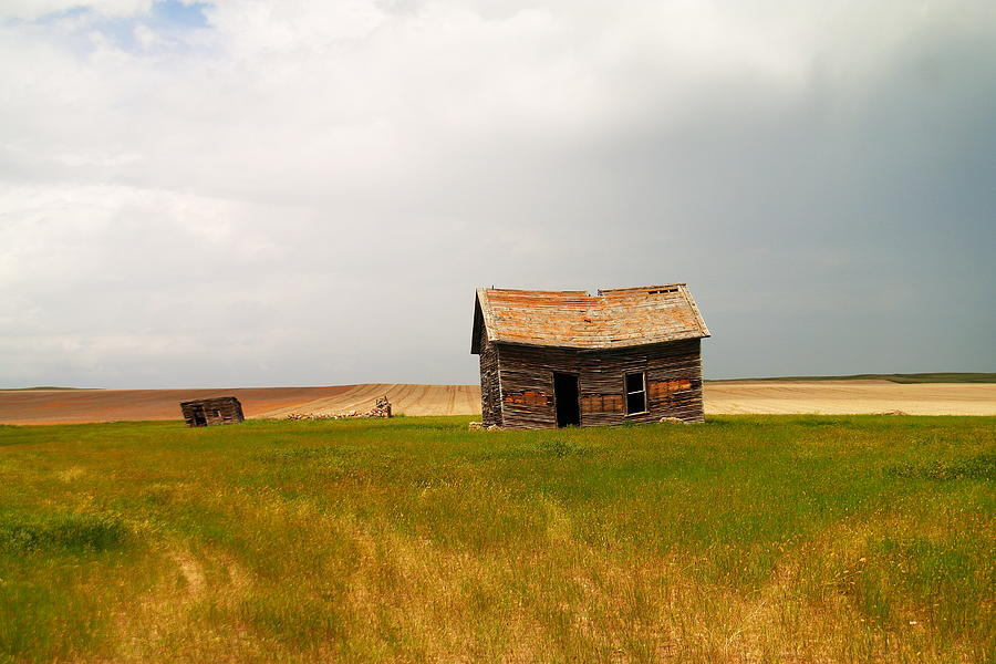 Montana Photograph - Home On The Range  by Jeff Swan