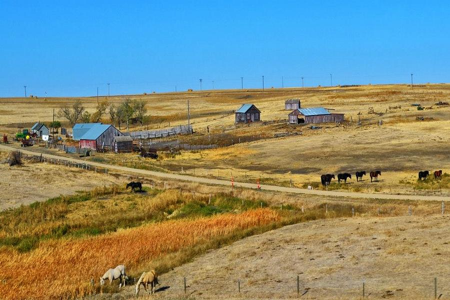 Barns Photograph - Home On The Range by Kelly Reber