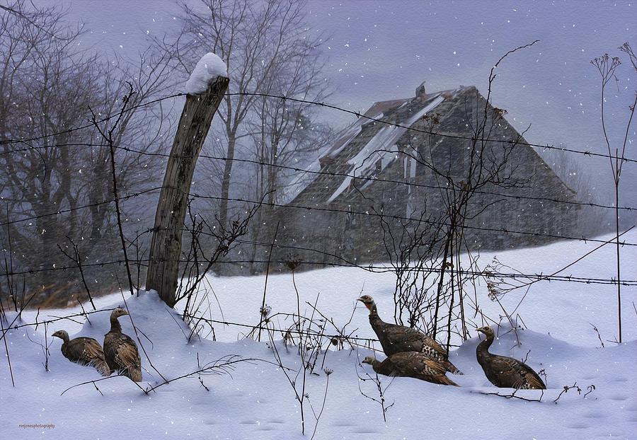 Ron Jones Photograph - Home Through The Snow by Ron Jones