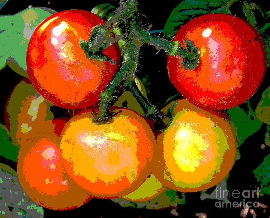 Tomatoes Photograph - Homegrown Tomatoes by Annette Allman