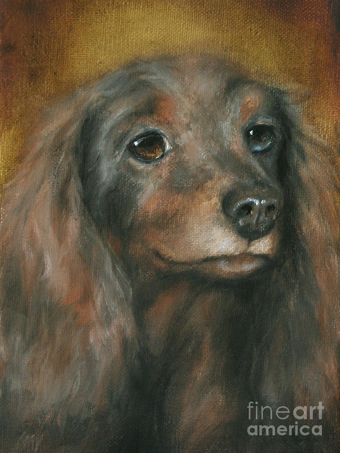 Dog Painting - Homeless Pet Babe by Stella Violano
