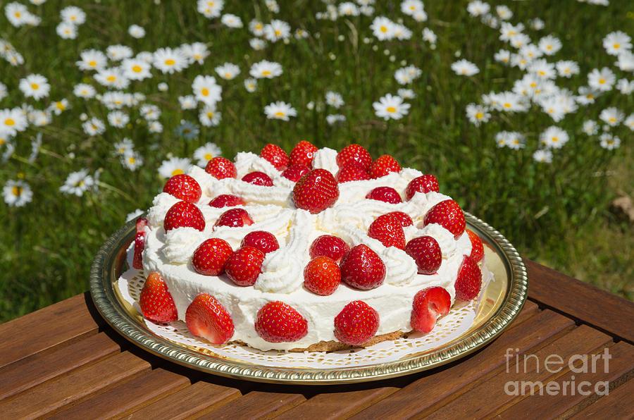 Homemade Cake Photograph