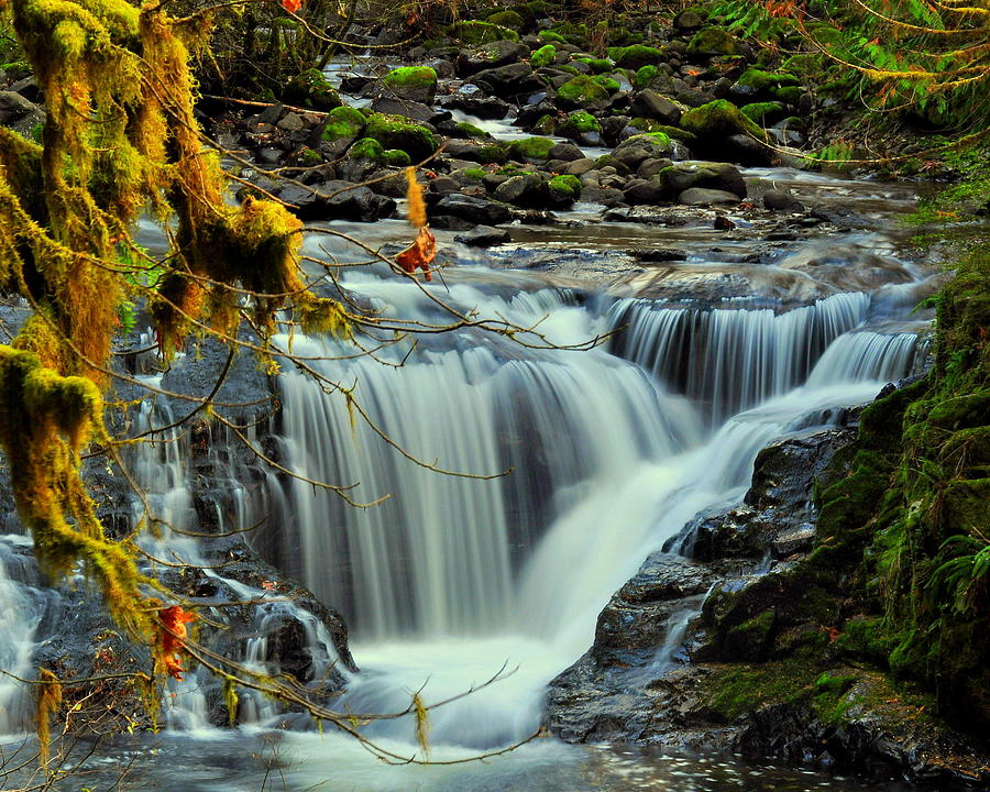 Waterfalls Photograph - Homestead Falls by Scott Gould