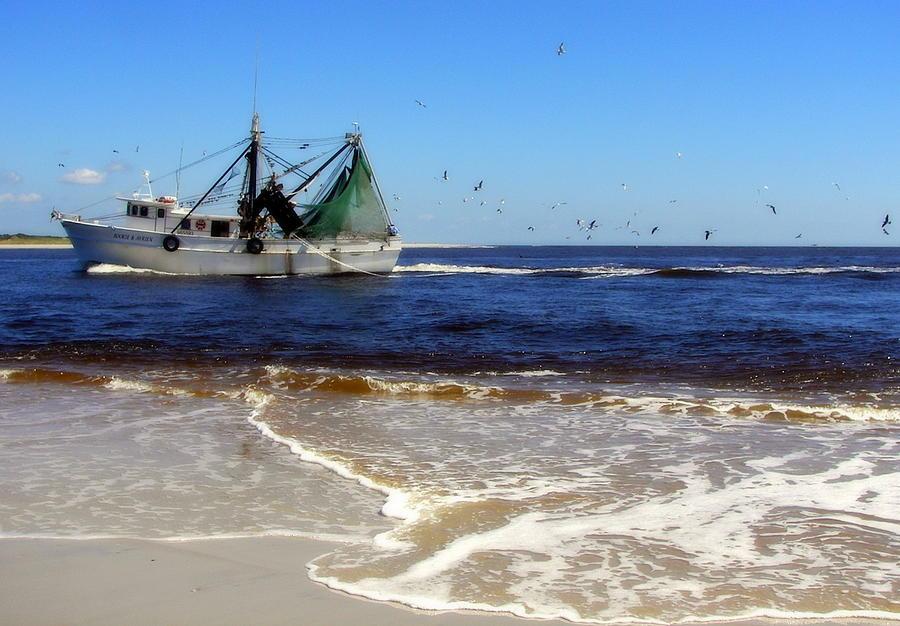 Shrimpboat Photograph - Homeward Bound by Karen Wiles
