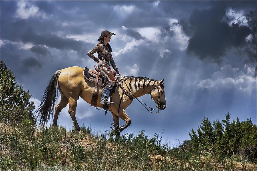 Horse Photograph - Homeward Bound by Priscilla Burgers