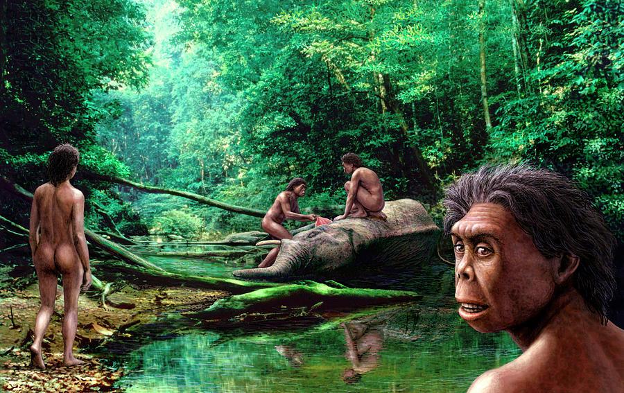 Homo Floresiensis Photograph - Homo Floresiensis by Mauricio Anton