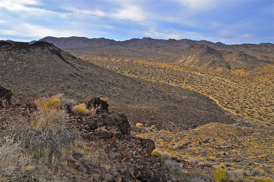 Desert Landscape Photograph - Hondo Wash by Lee Scott