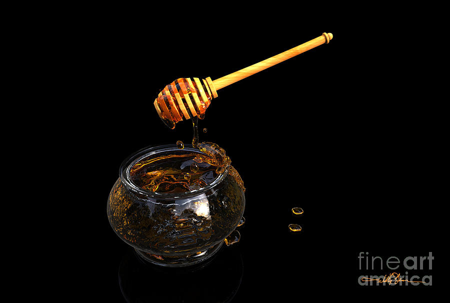 Honey and Ladle by William Ladson