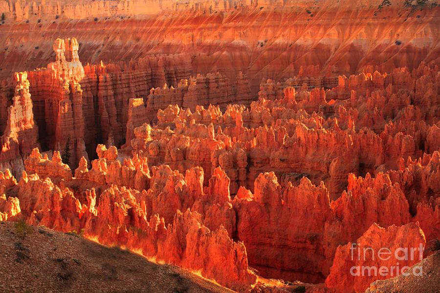 Rock Formations Photograph - Hoodoos Basin by Robert Bales