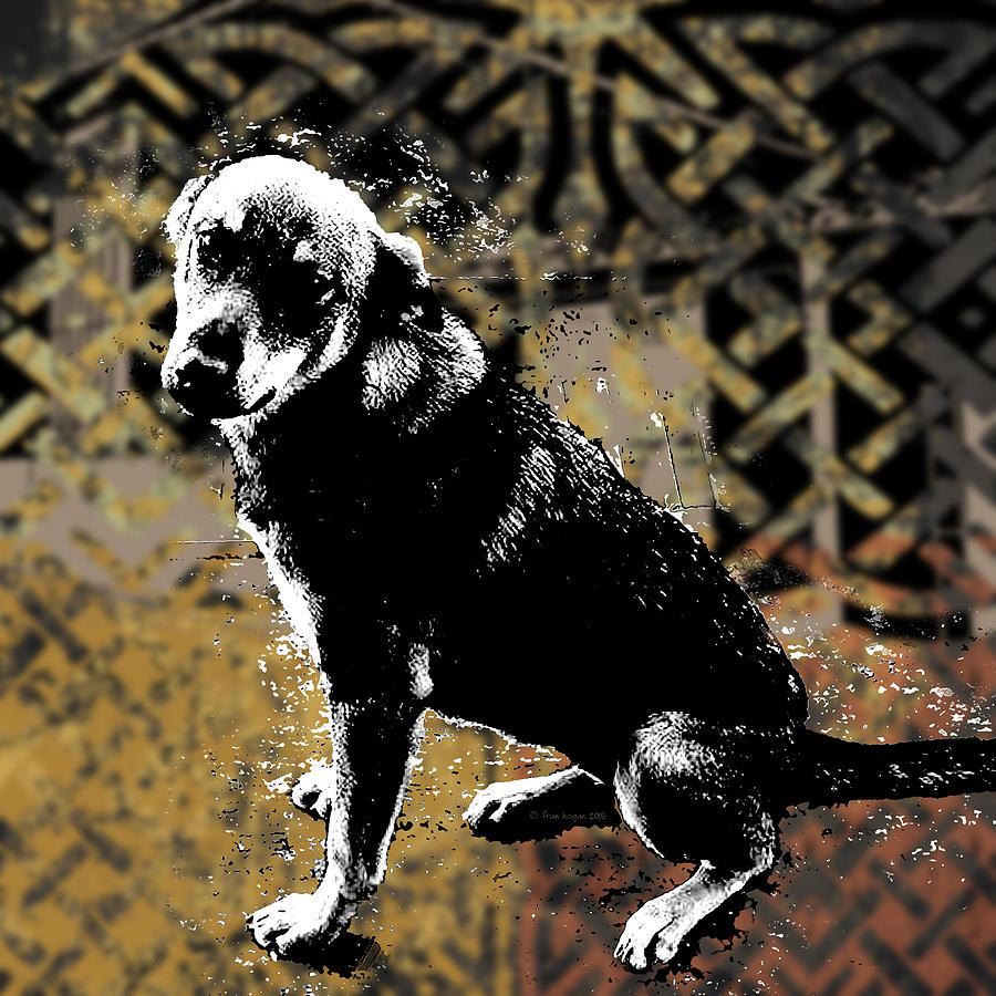 Dog Digital Art - Hope by Fran Hogan