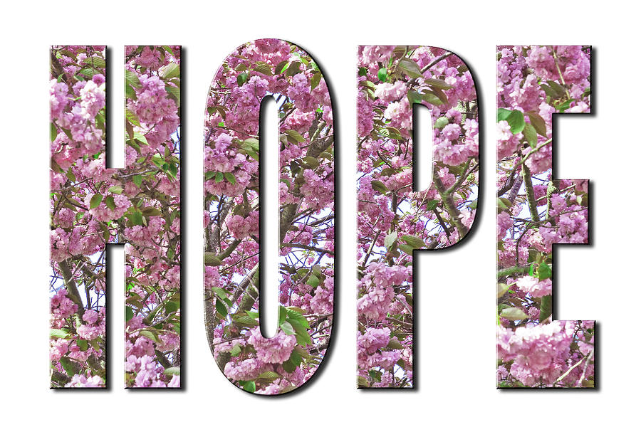 Hope in Cherry Blossoms from the Faith Hope and Love Series by Karen Stephenson