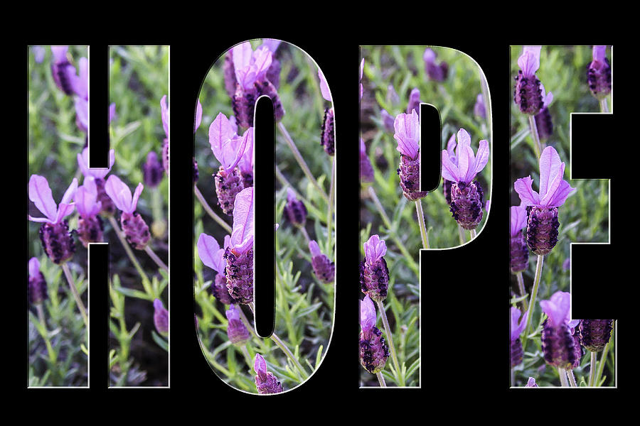 Hope in Spanish Lavender on Black from the Faith Hope and Love Series by Karen Stephenson