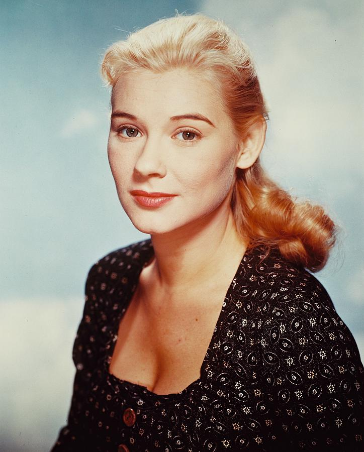 Hope Lange Photograph - Hope Lange by Silver Screen