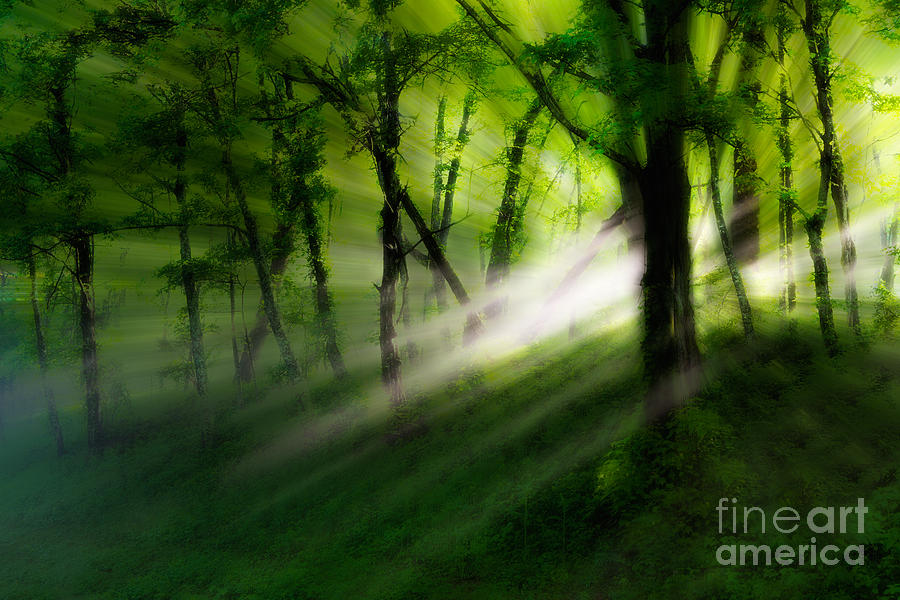 Blue Ridge Parkway Photograph - Hope Lights Eternal - A Tranquil Moments Landscape by Dan Carmichael