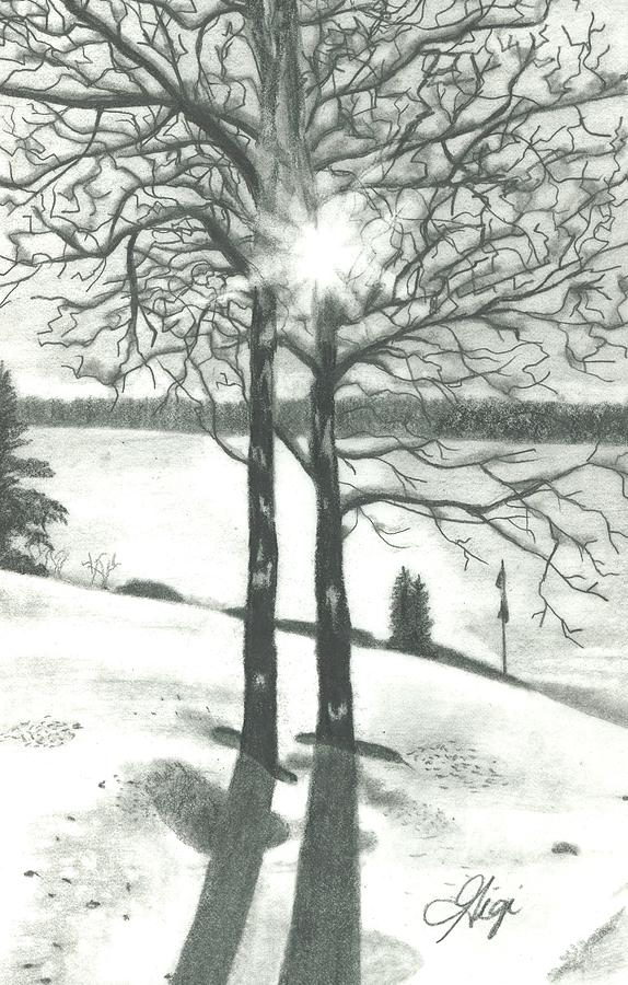 Sunshine Drawing - Hope Of Spring by Gigi Dequanne